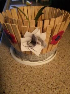 Pot de fleurs aloès